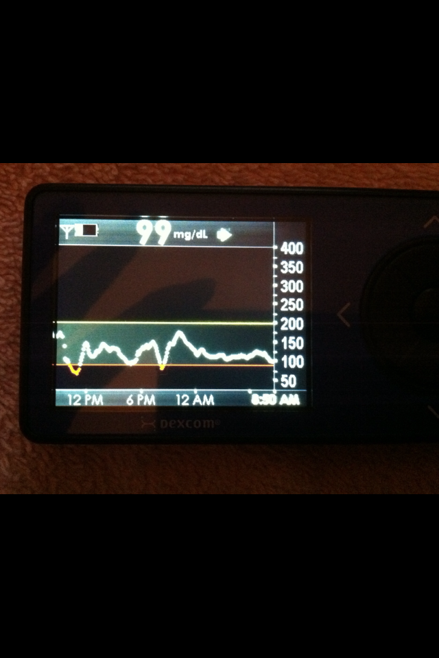 CGM graph after 1st 24 hours without eating meat